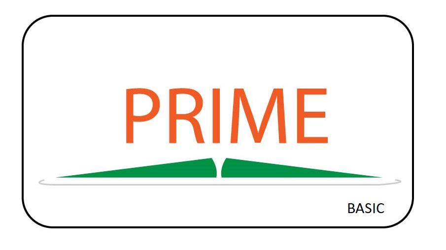 Prime Basic Licence