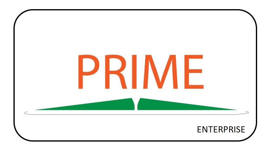 Prime Enterprise Licence