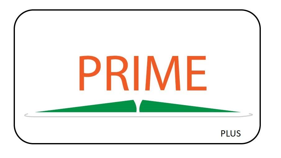Prime Plus Licence